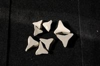 ceramic media - stars